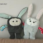 Les lapins Sacha réunis